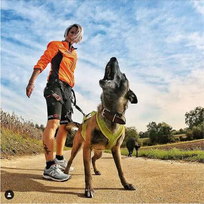 Di corsa con i cani